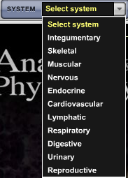 Anatomy and Physiology Revealed